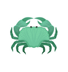 Flat icon of green crab marine creature vector