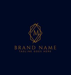 Luxury logotype premium letter m logo with golden vector
