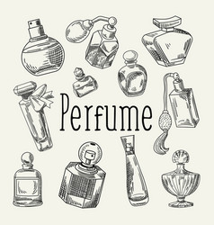 Perfume bottles hand drawn doodle vector