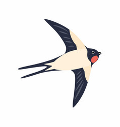 swallow in flight isolated on vector image