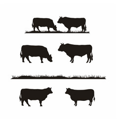 Vintage cattle angus cow grass silhouette vector