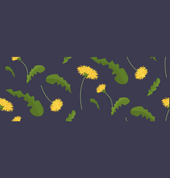 yellow dandelion flowers with green leaves spring vector image