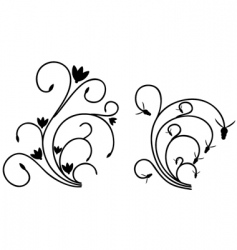 flourishes vector image