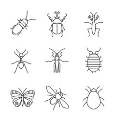 Insects linear icons set vector
