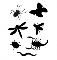 Insects silhouette vector