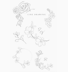 Line drawing floral wreaths frames branches vector