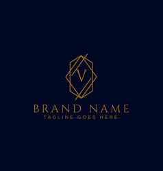 Luxury logotype premium letter v logo with golden vector