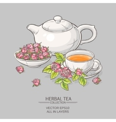 rose tea on grey background vector image
