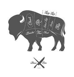 Vintage butcher cuts of bison buffalo scheme vector image