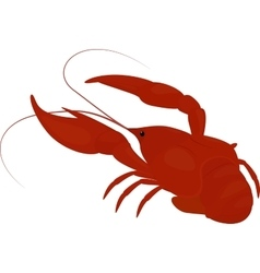 Boiled red crayfish crawfish vector