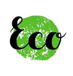eco sign hand drawn brush lettering vector image vector image