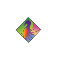 animal bird outline design template color vector image