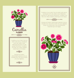 Camellia flower in pot banners vector
