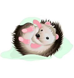 Cartoon hedgehog with blanket vector