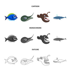 isolated object of sea and animal icon collection vector image