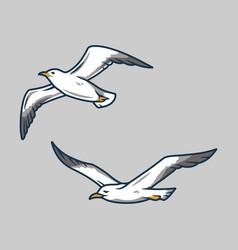 Seagull in sky for nautical marine logo vector