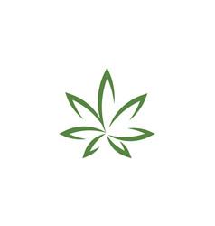 Canabis leaf vector