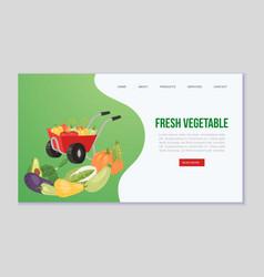farm eco vegetables and organic food web vector image