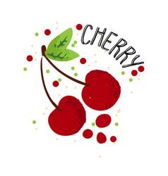 hand draw cherry red cherries vector image