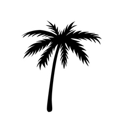 One palm tree outline vector