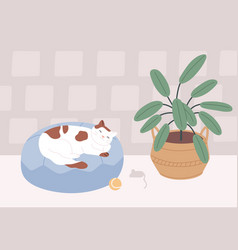 Relaxed cat sleeping in its bed in cozy room vector