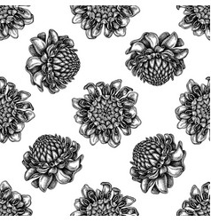 seamless pattern with black and white etlingera vector image