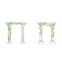 Ancient arch with marble columns and ivy vines vector