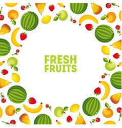 colorful fresh vegetables and fruits banner with vector image