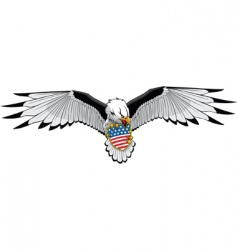 Eagle stars and stripes vector