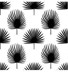 fan palm leaves seamless pattern vector image