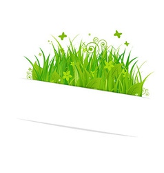 Paper Sticky With Grass vector image