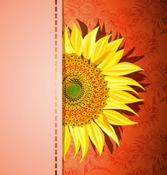 Red Sunflower Background vector image