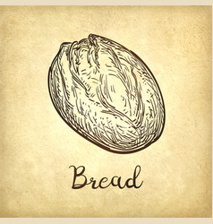 Rustic bread vector