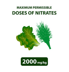 The maximum allowable dose nitrates in dill salad vector
