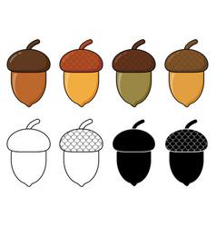 Acorn autumn drawing eps10 set oak nut cartoon vector