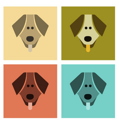 Assembly flat icons pet dog vector