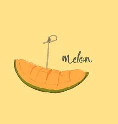 cantaloupe melon fruit vector image