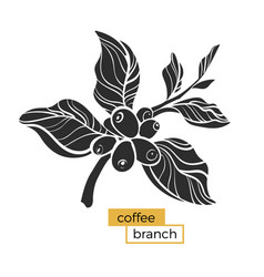 Coffee branch big vector