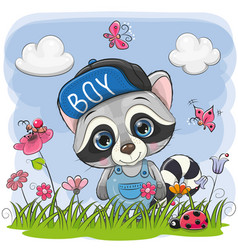 cute cartoon raccoon on a meadow vector image