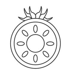 Half tomato icon vector