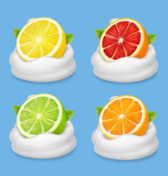 Orange lime grapefruit and lemon in yogurt vector