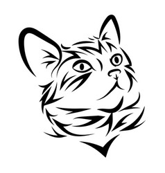 portrait a cat cute kitten black white vector image