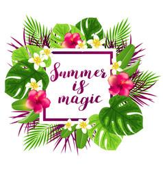 Summer tropical banner vector