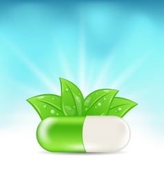 Natural Medical Pill with Green Leaves vector image vector image