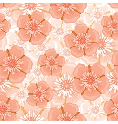 ranunculus pattern vector image