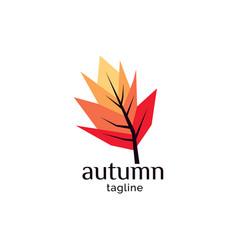 autumn logo design vector image