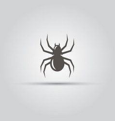 spider isolated icon vector image