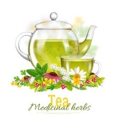 Teapot And Tea Cup Medicinal Herbs vector image