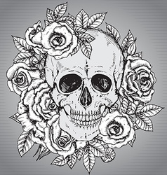 With hand drawn human skull with rose flower vector