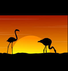 Silhouette of flamingo at sunset beauty landscape vector
